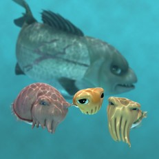 Cuttlefish Characters